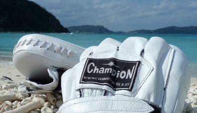 Champion - лучшие товары для единоборств